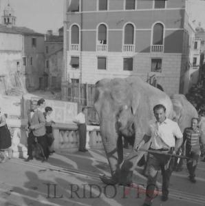 Le Circo Togni à Venezia, le 19 juillet 1954