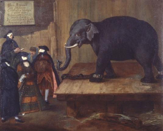 Pietro Longhi (Venise 1701 – 1785) L'éléphant huile sur toile