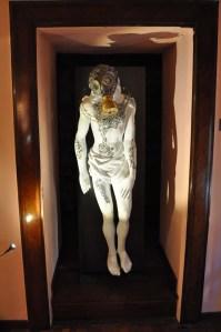 Wunderkammer - Cabinets de curiosités contemporain