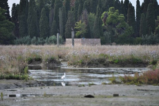 Isola in Rete 2013