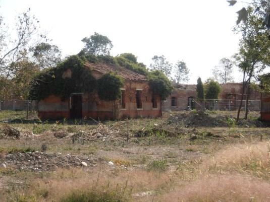 Ruines des installations militaires de la Certosa