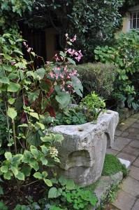 Un jardin bien caché dans Dorsoduro
