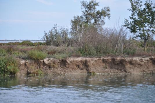 Isola La Cura