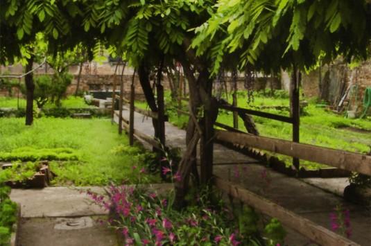 Ca' Morosini del Giardino