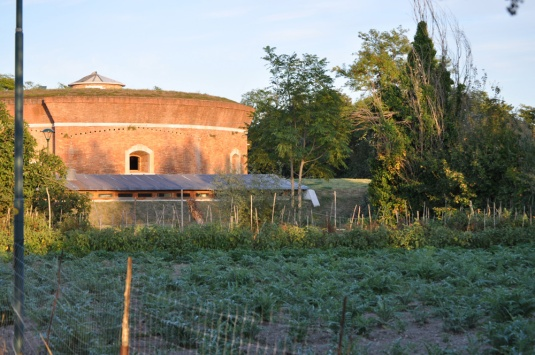 Isola di Sant'Erasmo