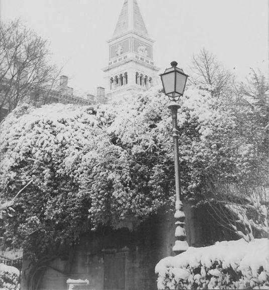Jardin Royal sous la neige
